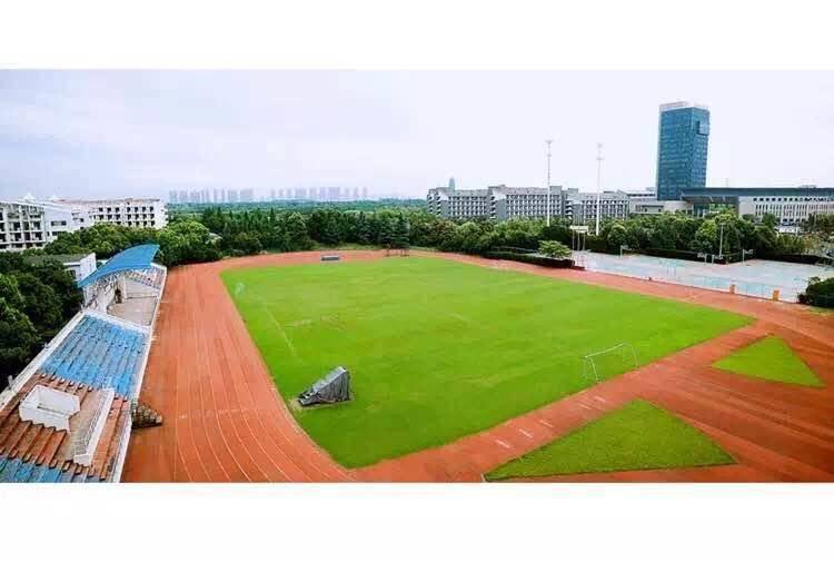 校果-浙江旅游职业学院操场场地租赁