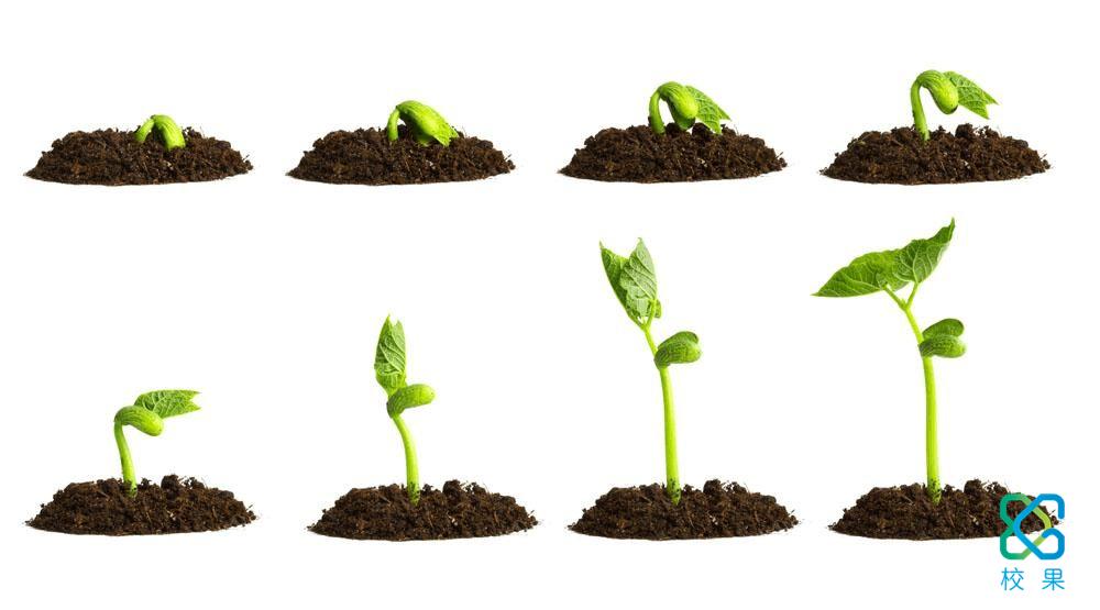 校园营销中种子用户的重要性-校果研究院-校园营销解决方案