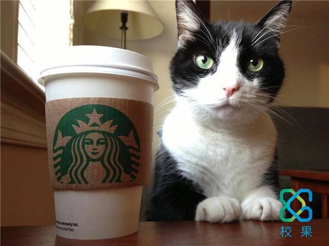 星巴克的猫爪杯被抢空 看校园营销推广背后的逻辑-校果研究院-校园营销解决方案