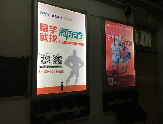 灯箱广告 安徽中医药大学-梅山路校区