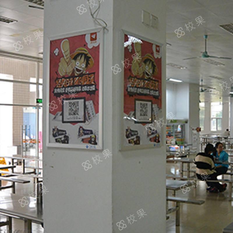 校果-合肥师范学院校园框架广告位