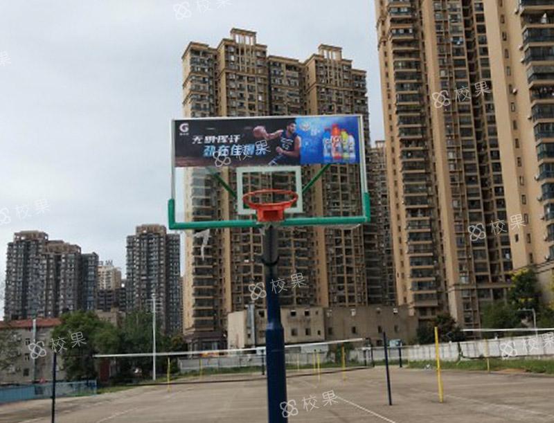 篮球板广告 武汉大学
